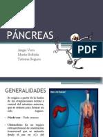 Exposición de Patología- Páncreas