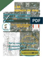 Municipalidad de Lima Anexo 14  - Análisis de Lima es Nuestra