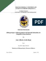 Tesis Luis Avila Hidrogeología Humedal Chaquilla