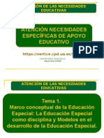 Tema 1 Marco Conceptual de La Educación Especial