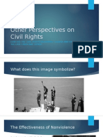 other perspectives on civil rights