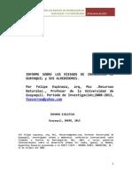 Informe Sobre Los Riesgos de Inundacion Guayaquil 2013, Completo