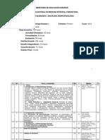 P1 Morfofisiología I