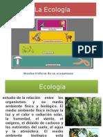 La Ecología