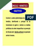 Carbunculo Hemático (1)