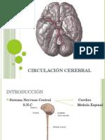 Clase 11 circulación Cerebral.pptx