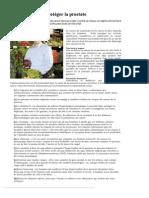 10 Aliments Pour Protéger La Prostate _ Selection