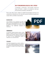 LA REALIDAD FENOMENOLOGICA DEL PERU.docx