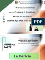 Sesion 1,2 y3 Perica Peritaje Poder Judicial