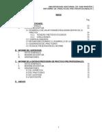 Informe de Practicas Pre-Profesionales-DICK