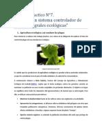 Trabajo+Practico+Ilustrado+N°7+(Realizar+un+sistema+controlador+de+plagas+integrales+ecológicas)..pdf