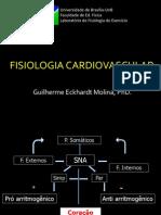 Molina_Aula_Fisiol_cardiovascular_2.pdf