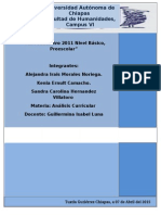 Plan Educativo 2011 Nivel Básico