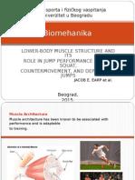 Biomehanika - Earp