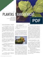 Artigo - Plantas transgênicas