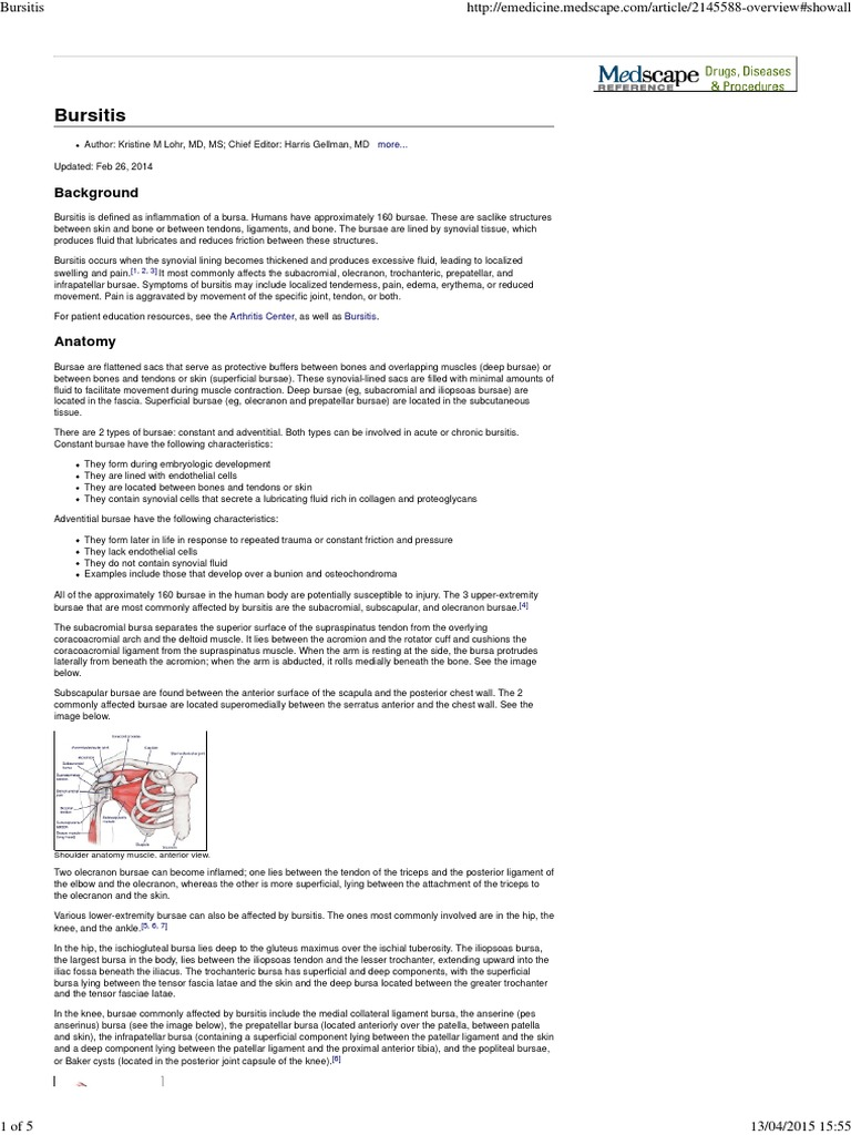 Bursitis   Knee   Human Anatomy