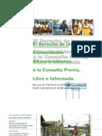 derechos comunidades negras.pptx