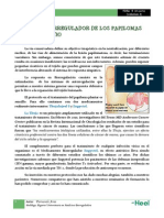Tratamiento Papilomas