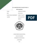 Mikromeritika Asri Budi Yulianti 260110140110