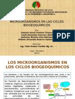 Ciclos Biogeoquimico