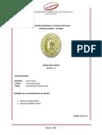 participacion y demo, trabajo BERTHA.pdf