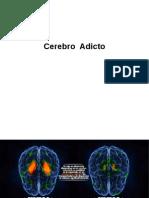 Cerebro Adicto