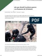 Guerra Entre Chimpancés