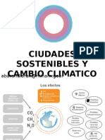 Presentacion San Isidro