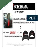Campaña Septiembre - Yokohama 60 Copias
