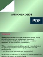 251834517-aminoglicozidele
