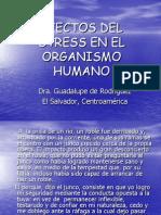 Efectos Del Stress en El Organismo Humano PDF