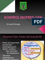 Biokim Kontrol Ekspresi Gen 2015