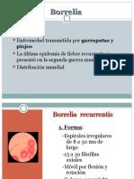 2 - Borrelia