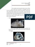 Artikel Mineral Felsik