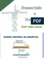 Aula 5 - Transcrição e Tradução Do DNA