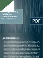 Sociogénesis y Teoría Del Conocimiento