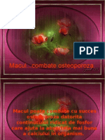 Osteoporoza si macul.pps