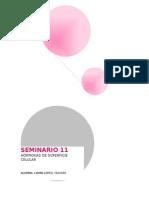 SEMINARIO 11