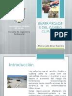 ENFERMEDADES DEL CAMBIO CLIMÁTICO - ADVERTENCIA.pptx