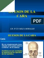 HUESOS DE LA CARA.ppt