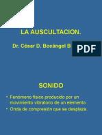 BAses Fisiopatologicas Dela Auscultacion