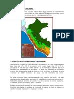 Las 11 Ecoregiones Del Perú