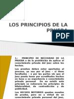 Los Principios de La Pruebal