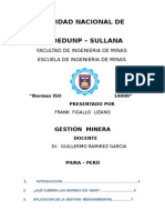 Trabajo Final de Gestion Minera