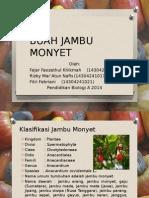 PPT BUAH JAMBU MONYET.pptx