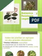Botánica y fisiología vegetal.pptx