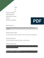 PRESION ESTATICA.docx