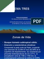 Curso para Tecnicos Forestales Comunitarios Tema Tres.ppt