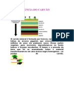 aimportnciadocarvomineral-131029191802-phpapp01