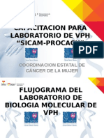 Capacitacion de Laboratorio de Vph en Sicam-procacu